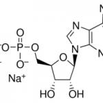 structure of Adenosine 5'-monophosphate disodium salt CAS 4578-31-8