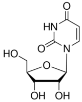 structure of Uridine CAS 58-96-8