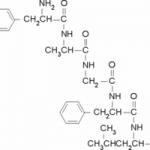 Structure of Tyrosylalanylglycylphenylalanylleucine CAS 64963-01-5