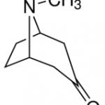 Structure of Tropinone CAS 532-24-1