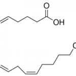 Structure of Arachidonicacid CAS 506-32-1