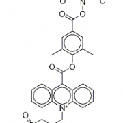 Structure of NSP-DMAE-NHS CAS 194357-64-7