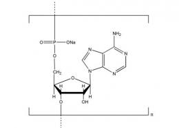 Structure of Polyadenosinic acid sodium salt CAS NNA-0009