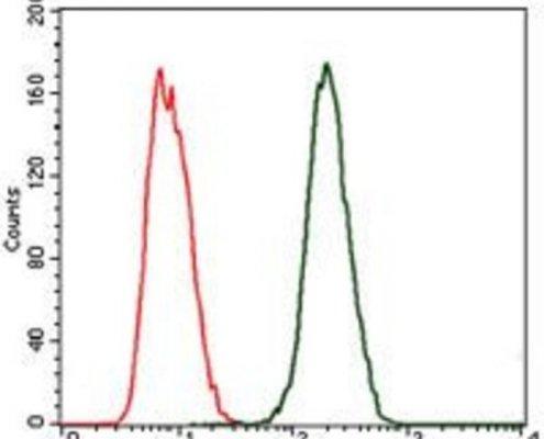 Anti-C-Reactive-Protein-CRP-Antibody-in-flow