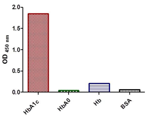Anti-HbA1c-Hemoglobin-CAS-9008-02-0-A1c-antibody-in-ELISA2