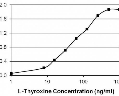 Thyroxine-T4-Antibody-in-ELISA