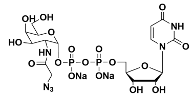Structure of UDP-GalNAz.2Na CAS 653600-61-4