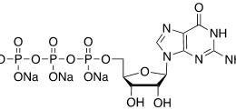Structure of Guanosine-5'-triphosphate [GTP], Trisodium salt CAS 36051-31-7